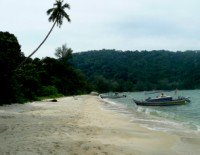 Visit our Monkey Beach Page