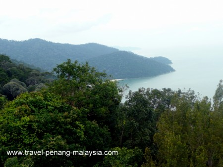 View from Muka Head