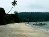 Go  to Monkey Beach