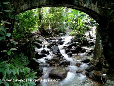photo of the river that runs through the Penang Botanic Gardens