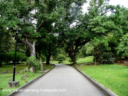 Penang Botanical Gardens Photos