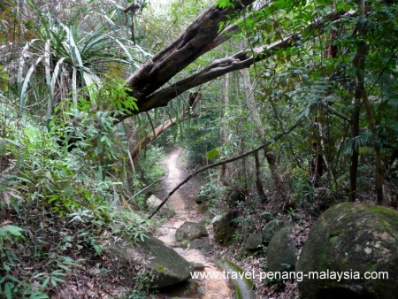Penang National Park photos
