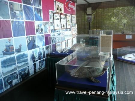 Displays at the Penang Turtle Sanctuary