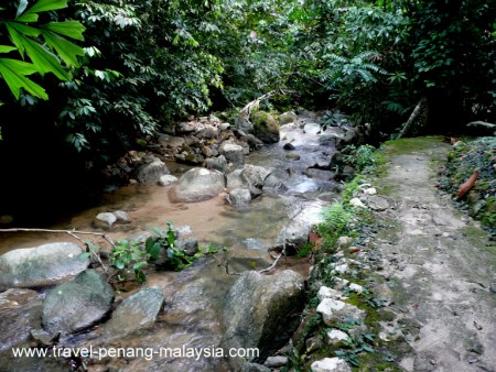 Photo of the River in Penang Botanic Gardens