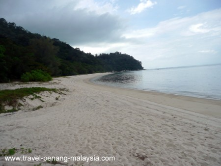 Teluk Kampi Beach Penang National Park