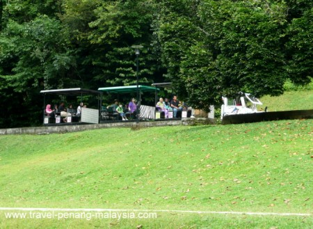 Photo of the garden train in Penang Botanic Gardens