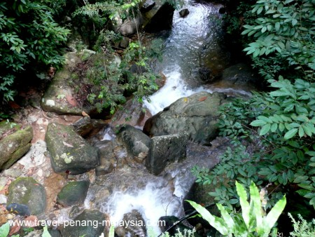 Photo of a Waterfall in Penang Botanic Gardens