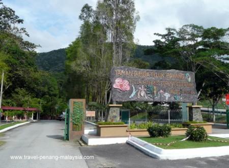 Entrance to Teluk Bahang Forest Park