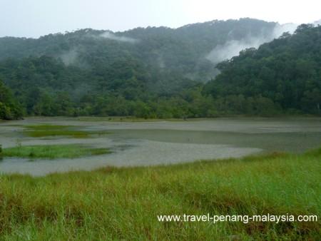 Meromictic lake Penang National Park